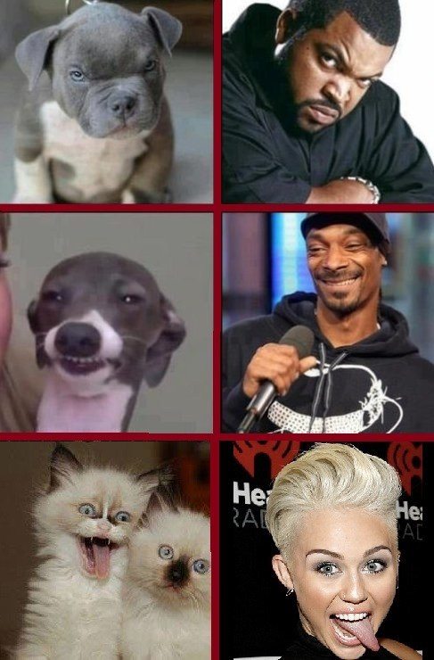 ice cube,miley cyrus,snoop dogg