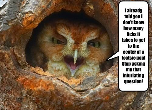 candy Owl angry tree - 7795161344