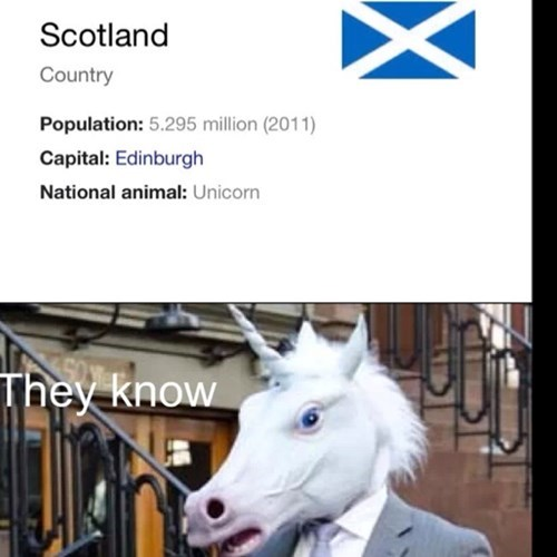 Scotland goes hard