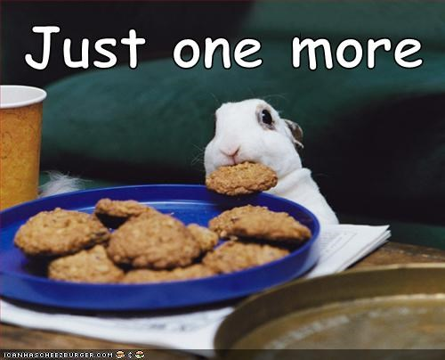 cute,rabbit,bunny,cookies