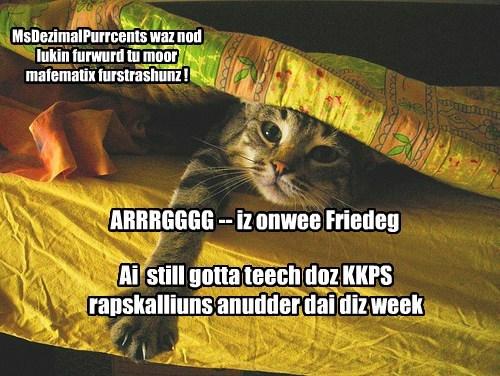 Cheezburger Image 7796228096