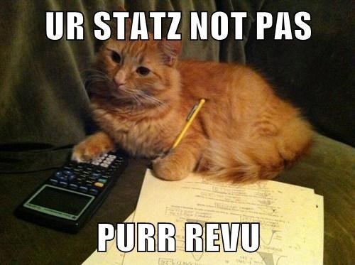 cat work cute math stats - 7797170432