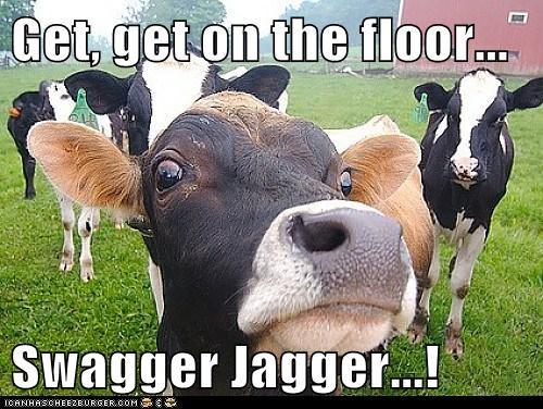 Cheezburger Image 7797264128