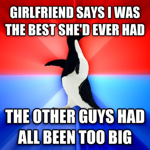 socially awkward awesome penguin relationships Memes dating - 7797670400