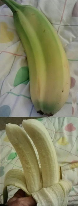 banana,free stuff,funny,fruit