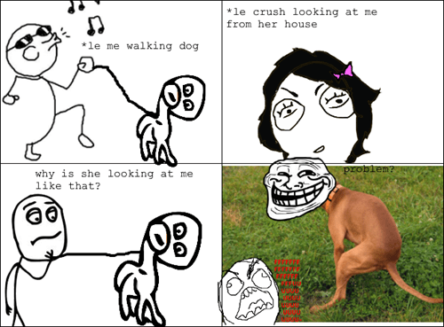 dogs,dog poop,crushes,pooping