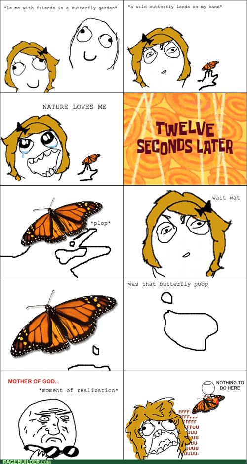 mother of god butterflies - 7798759168
