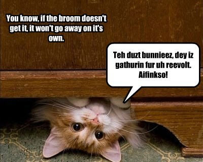 You know, if the broom doesn't get it, it won't go away on it's own. Teh duzt bunnieez, dey iz gathurin fur uh reevolt. Aifinkso!