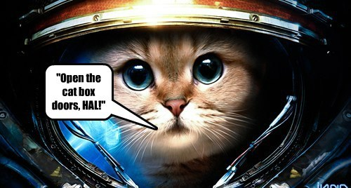 """Open the cat box doors, HAL!"""