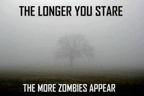 wtf,optical illusions,fogs,zombie,funny