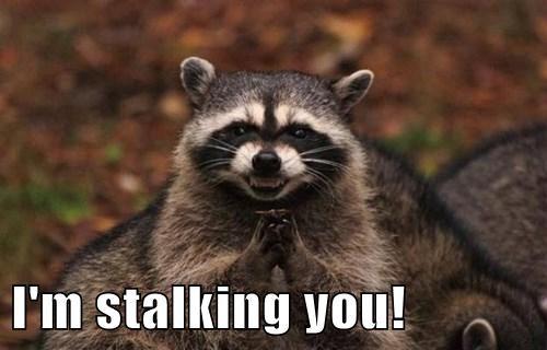 I'm stalking you!