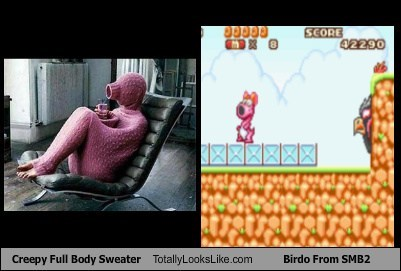 sweater birdo totally looks like super mario brothers funny