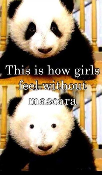 panda pun girls make up