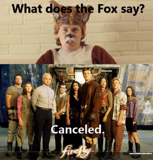 the fox canceled ylvis Firefly - 7803530240