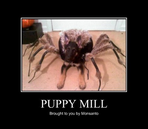monsanto puppy mill science funny - 7803567104
