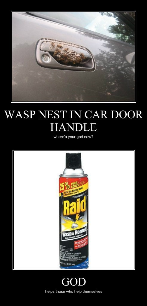 wasps,spray,raid,pray,funny