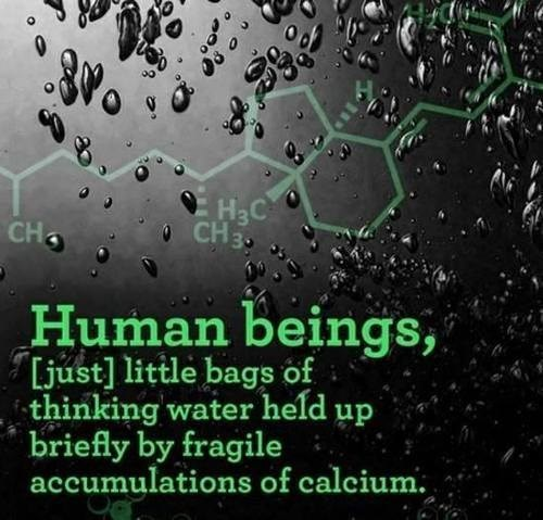 water thinking humans science funny - 7804211456