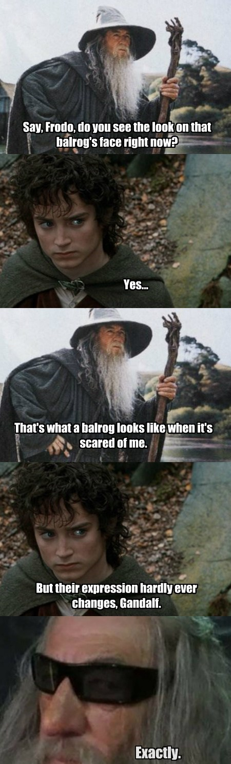Lord of the Rings,glasses,gandalf,funny