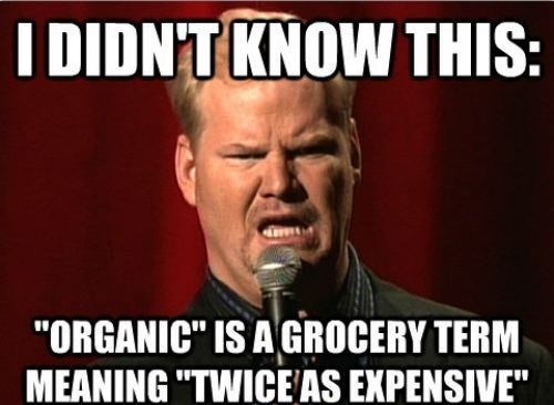 jim gaffigan,money,organic