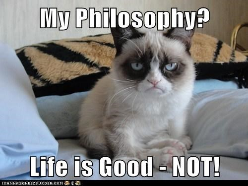 Grumpy Cat life philosophy - 7805882112