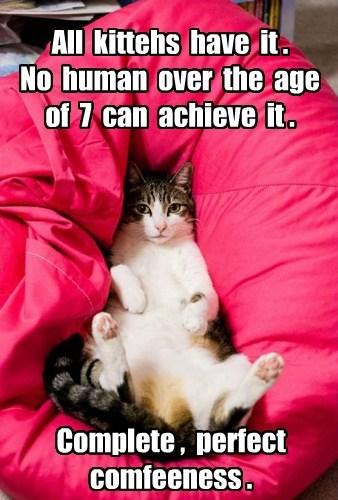 All kittehs have it . No human over the age of 7 can achieve it . Complete , perfect comfeeness .