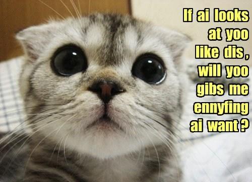 cute lolspeak begging - 7806511616