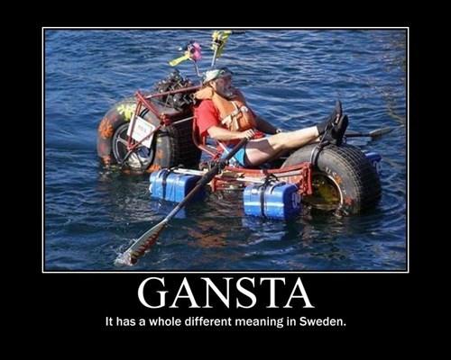 gangsta wtf rollin Sweden funny - 7806662400