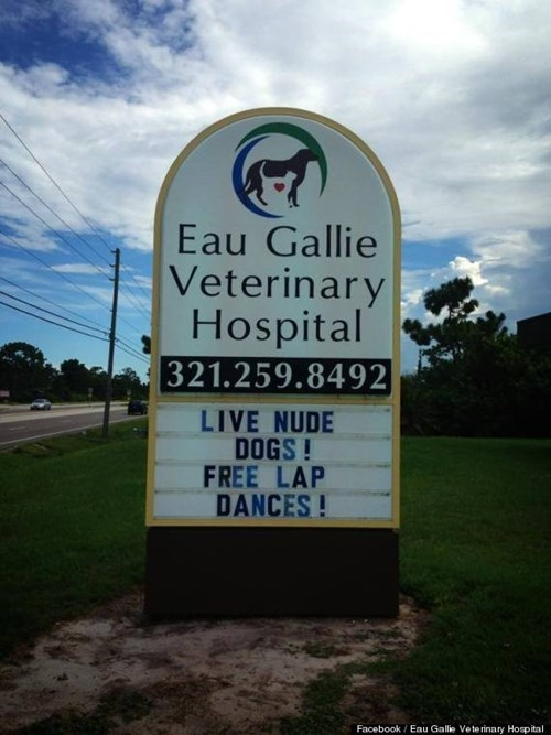 veterinary hospital,eau gallie veterinary hospital,business signs,eau gallie