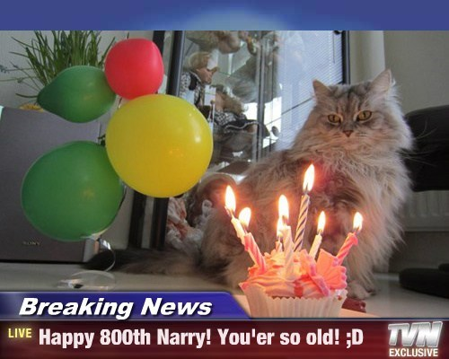 Breaking News - Happy 800th Narry! You'er so old! ;D