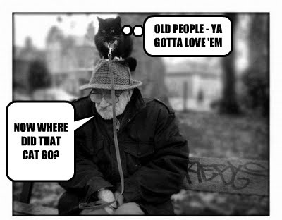 old man Cats funny - 7807995904