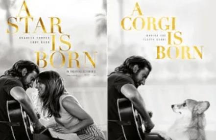 movie poster corgi funny dogs - 7808005