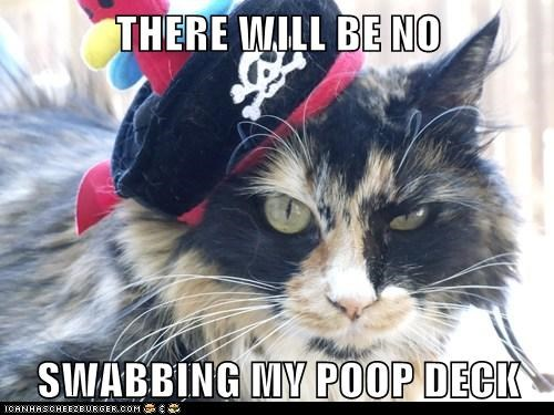 cat,swab,Pirate,poop deck