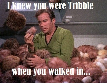 I knew you were Tribble when you walked in...
