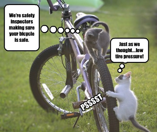 We're safety inspectors making sure your bicycle is safe.