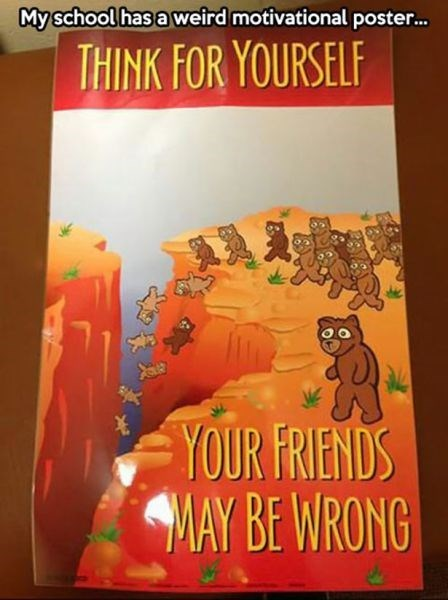 motivational,bears,posters,g rated,School of FAIL