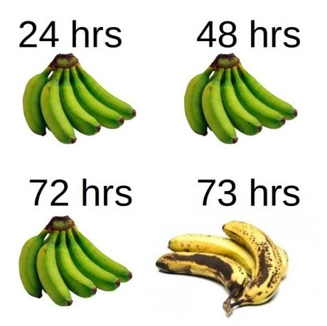 bananas,food