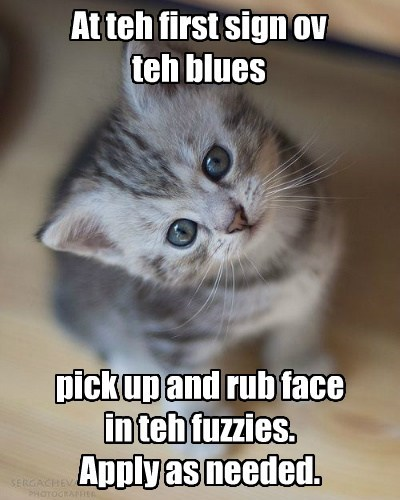 At teh first sign ov teh blues pick up and rub face in teh fuzzies. Apply as needed.