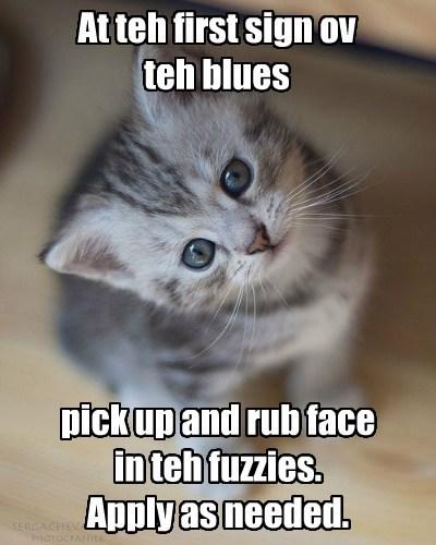 healing kitten fuzzy - 7813040896