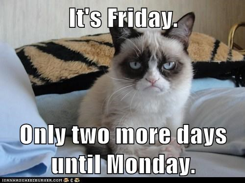 Funny Meme Its Friday : It's friday. only two more days until monday. lolcats lol cat