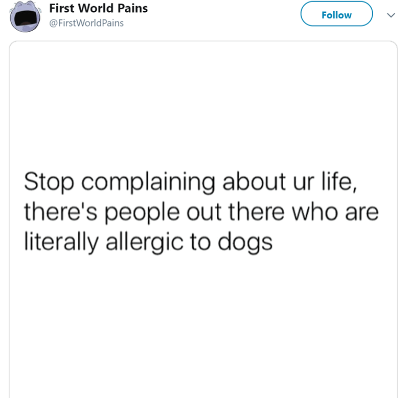 pets First World Problems funny tweets animal tweets pains - 7814405