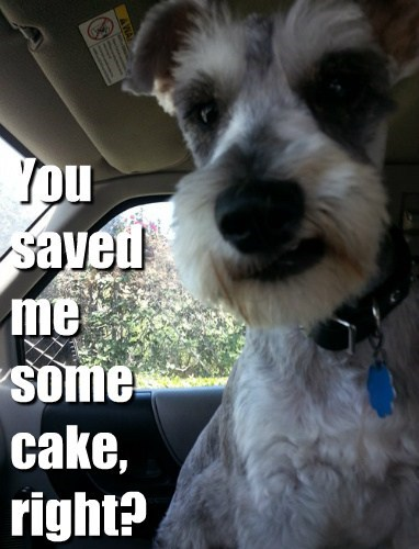 You saved me some cake, right?