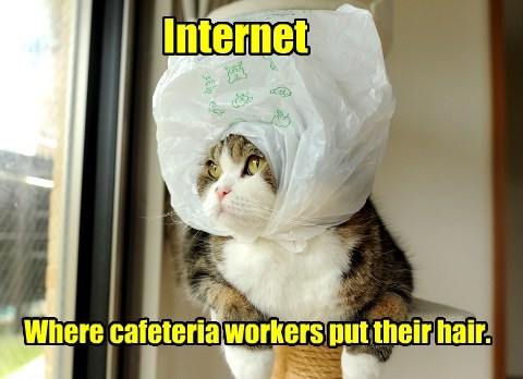 Internet Where cafeteria workers put their hair.