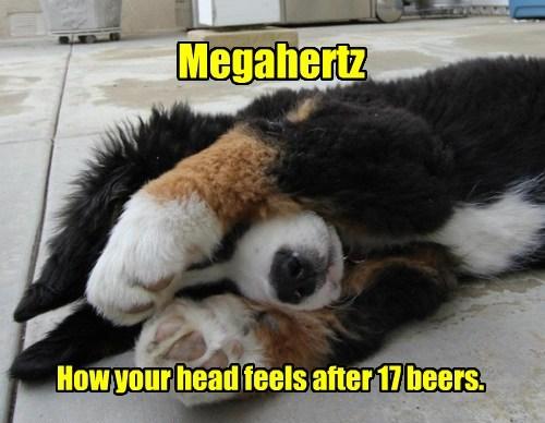 Megahertz How your head feels after 17 beers.
