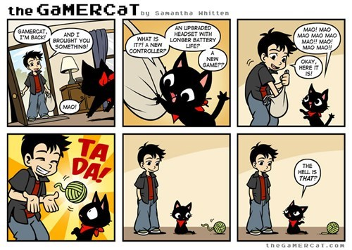 the gamer cat