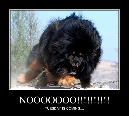 NOOOOOOO!!!!!!!!!! TUESDAY IS COMING....