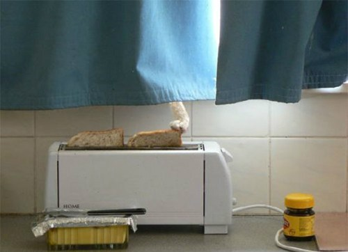 hungry sneaky Cats toaster - 7817731328