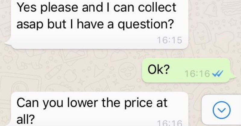 cheapskate has very weird conversation with seller