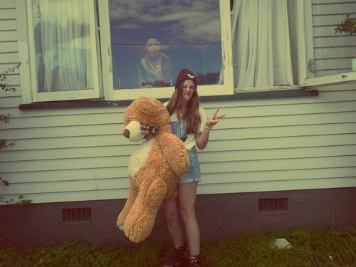 photobomb,windows,giant teddy bear,funny
