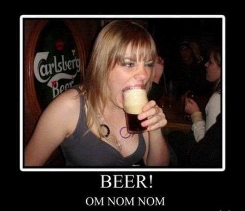 beer noms funny - 7817895936