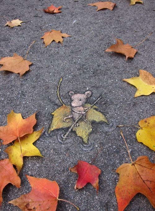 Street Art chalk art graffiti funny - 7817903360